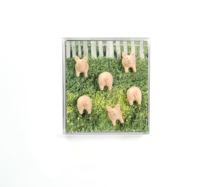 Magnet piggy set van 6