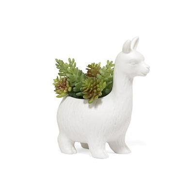 Lloyd the lama planter