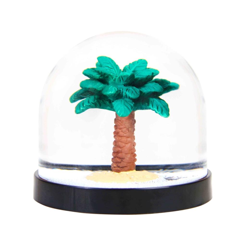 Wonderball palm tree