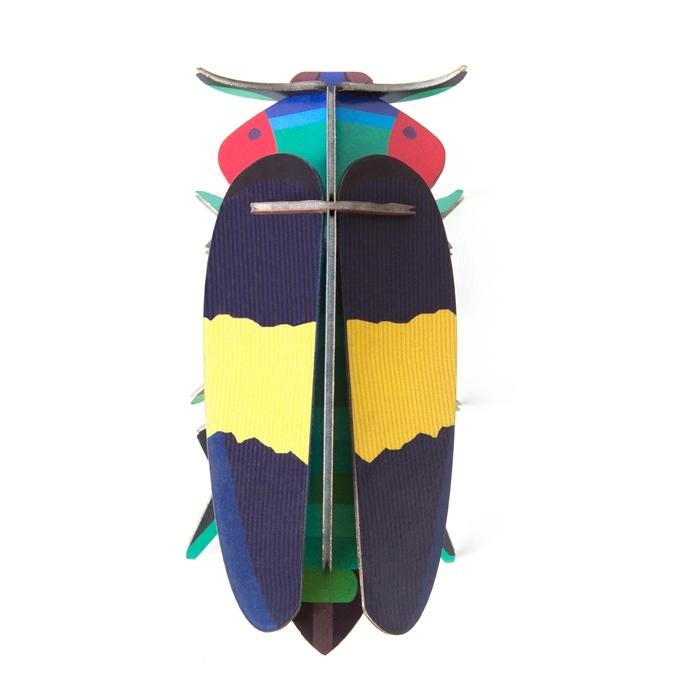 Little wonders of nature jewel beetle