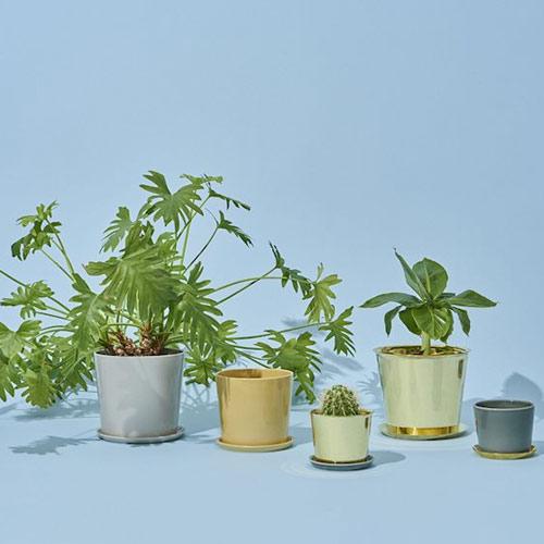 HAY Botanical Pot XL Dustygreen