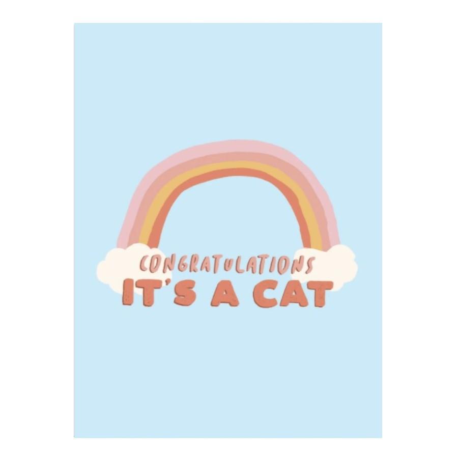 Cardimals - animal love cat